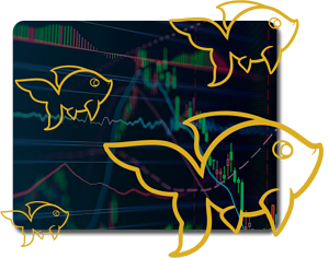 Banner for Forex Trading Course Level 1