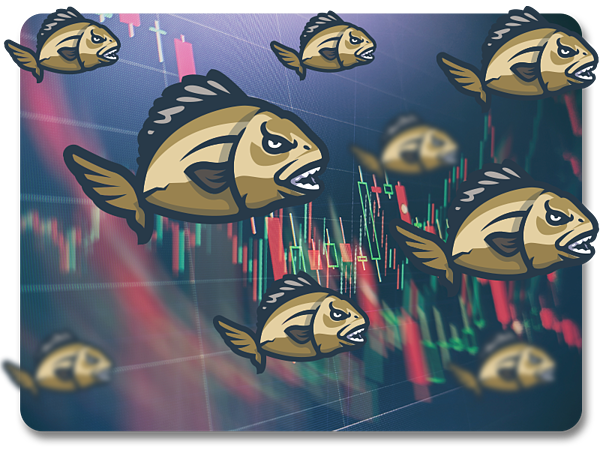 A school of piranhas swimming against the background of a trading chart