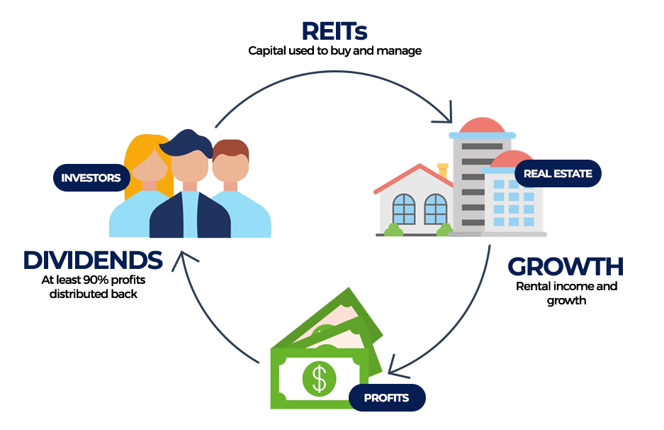 Diagram showing the relationship between REITS, growth and dividends