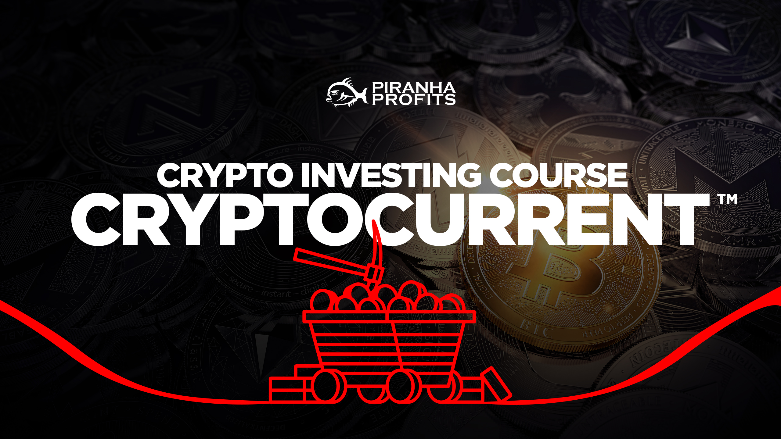 Cryptocurrency investing course banner