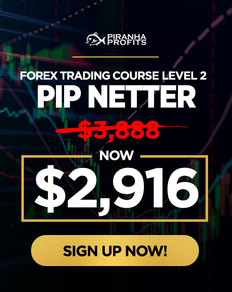 FOREX TRADING L2 (FOR WEBSITE)
