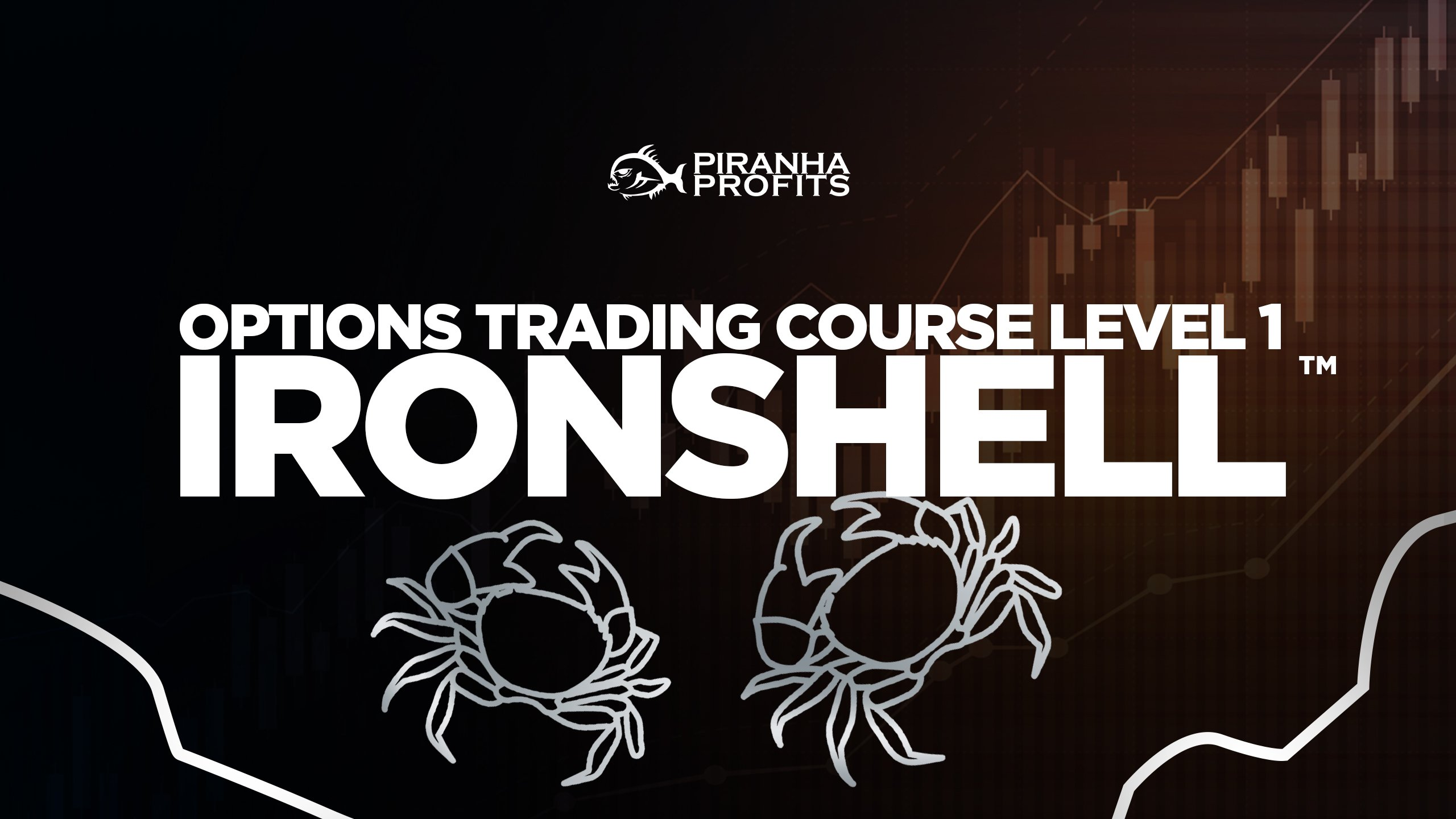 Online options trading course Options Ironshell banner