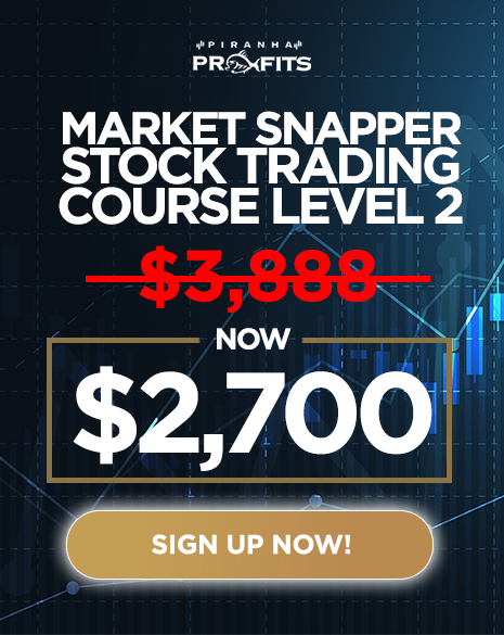 BF Market Snapper