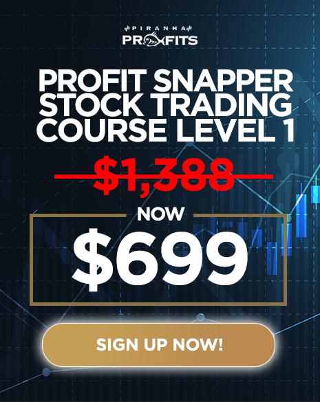 BF Profit Snapper
