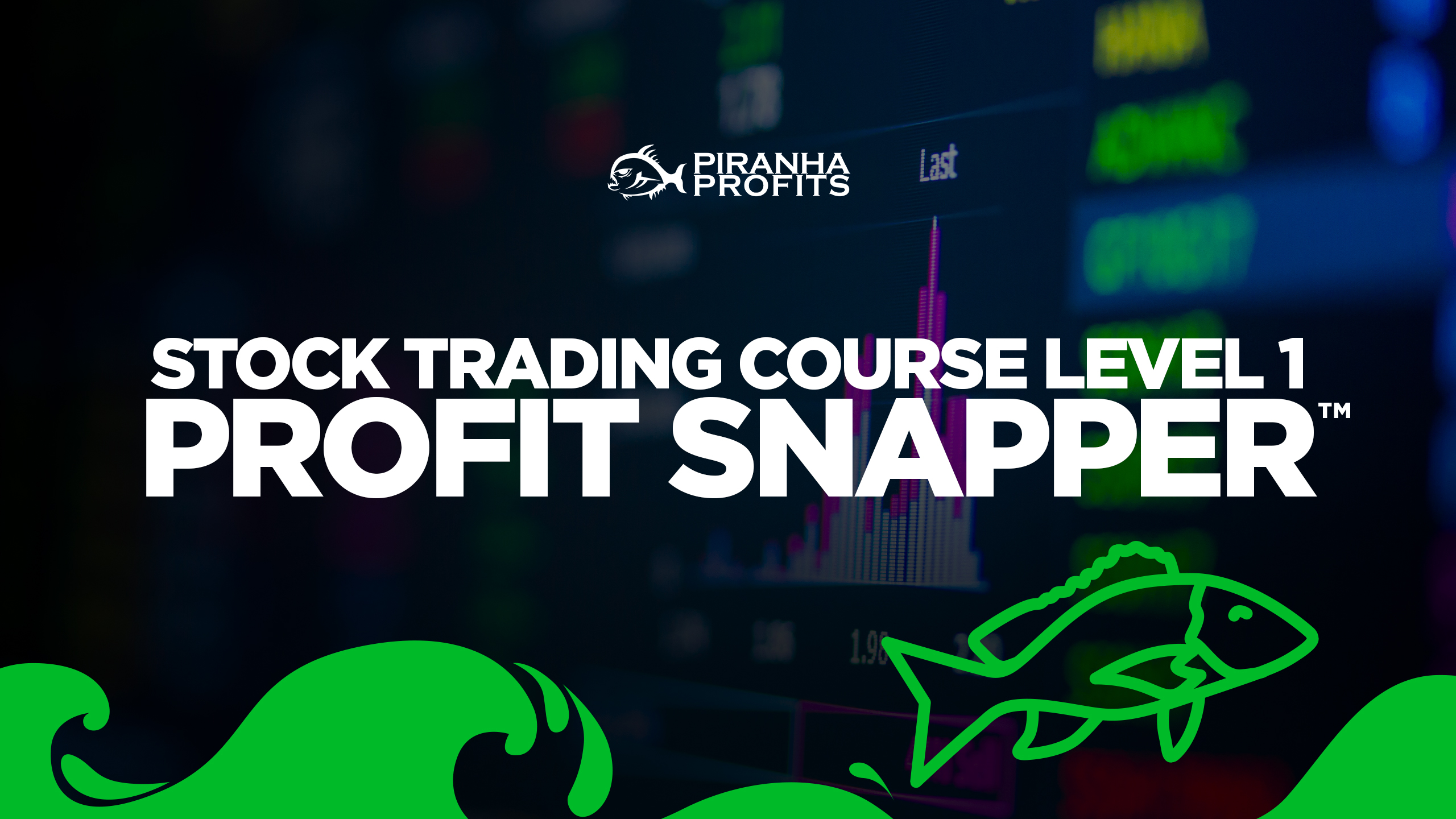 Online Stock Trading Course Level 1 Profit Snapper banner
