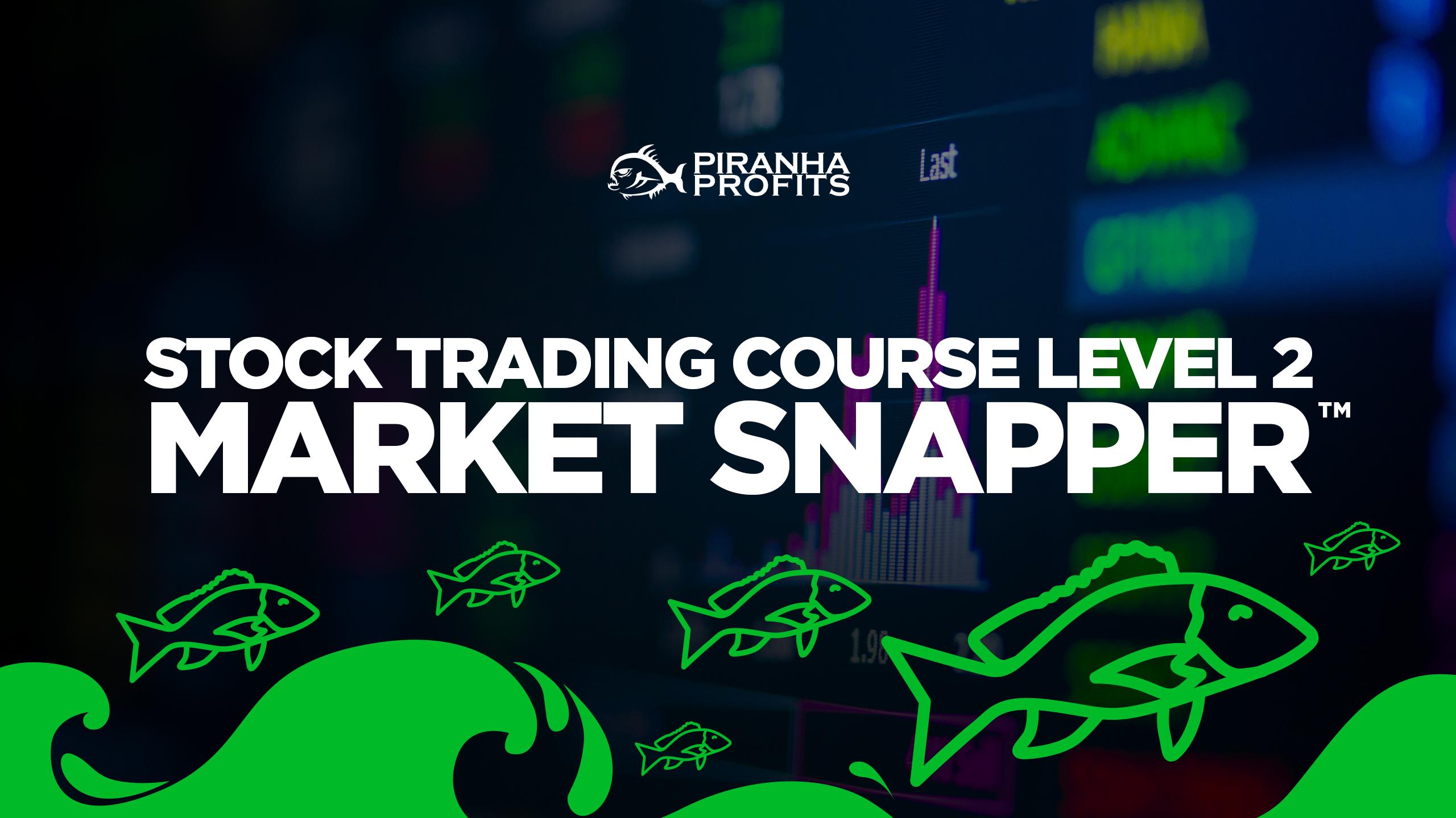 Online Stock Trading Course Level 2 Market Snapper banner