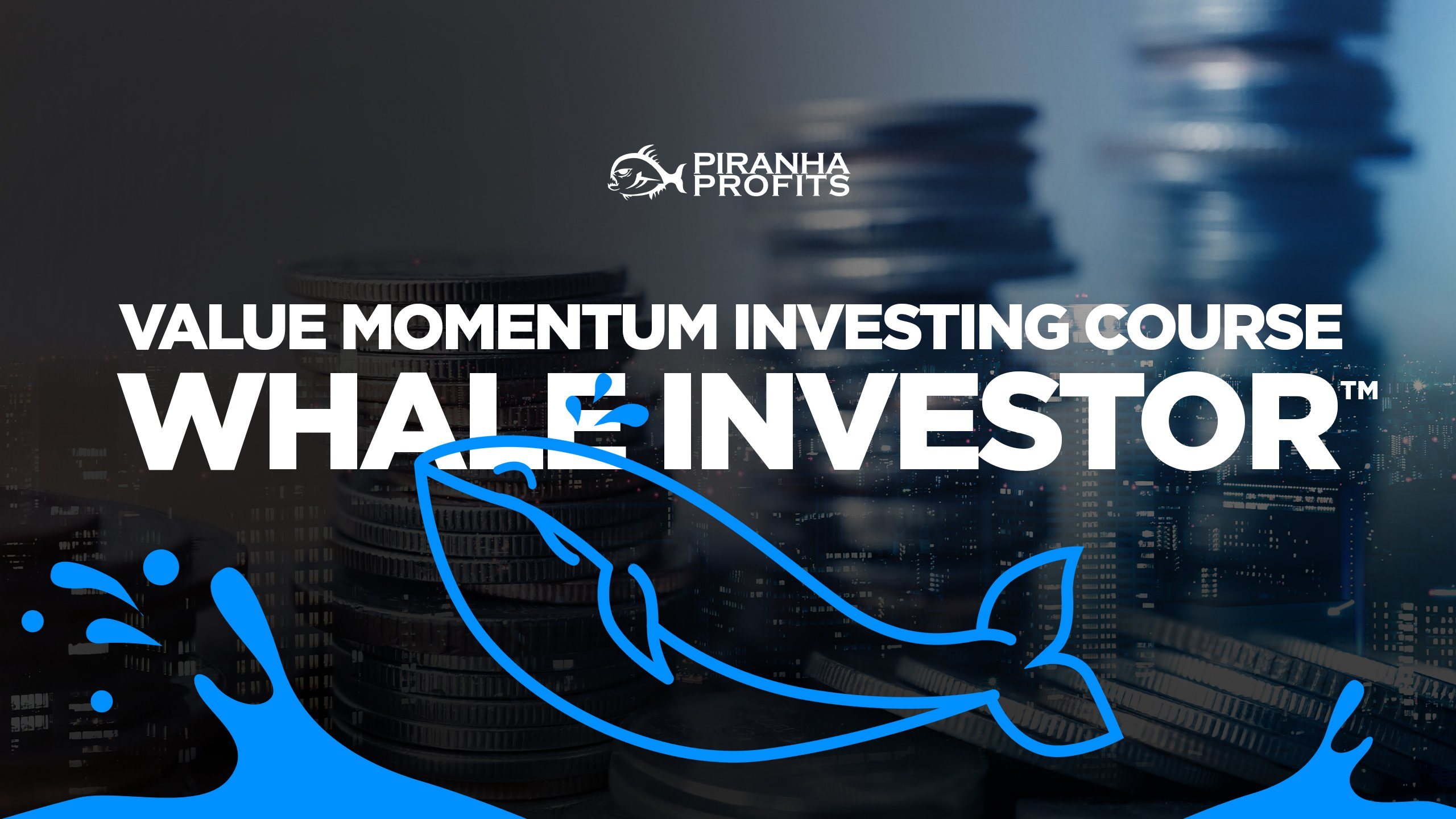 Whale Investor Value Momentum Investing course banner